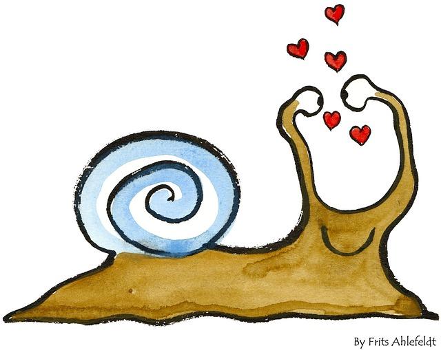 snail-73342_640