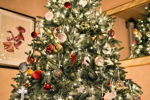 christmas-tree-1081981_640.jpg