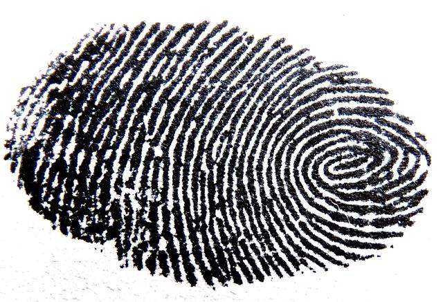 fingerprint-456483_640.jpg