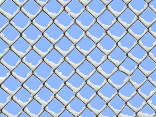 wire-mesh-fence-260043_1920.jpg