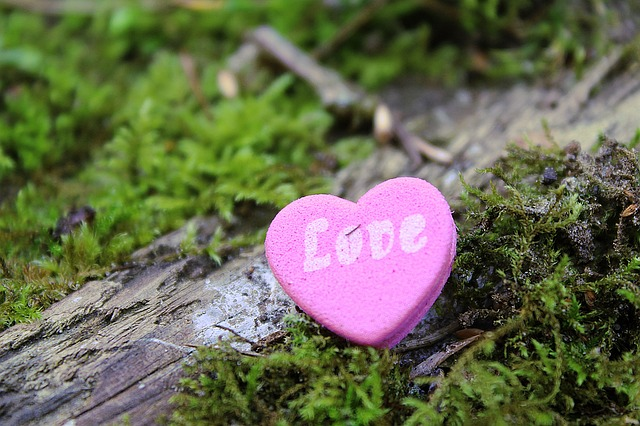 heart-1318846_640
